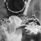 079. Подводный мир