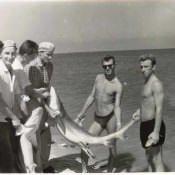 Акулы, порвавшие нашу сеть. Октябрь 1962 года. База «Гранма».