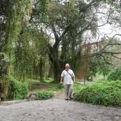 413. 2012. Парк Альмендарес, фото 2