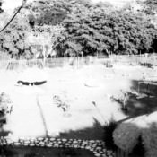 1967-1969. Зона отдыха «Чайка», вид сверху