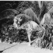 Зона отдыха «Чайка», фото 8
