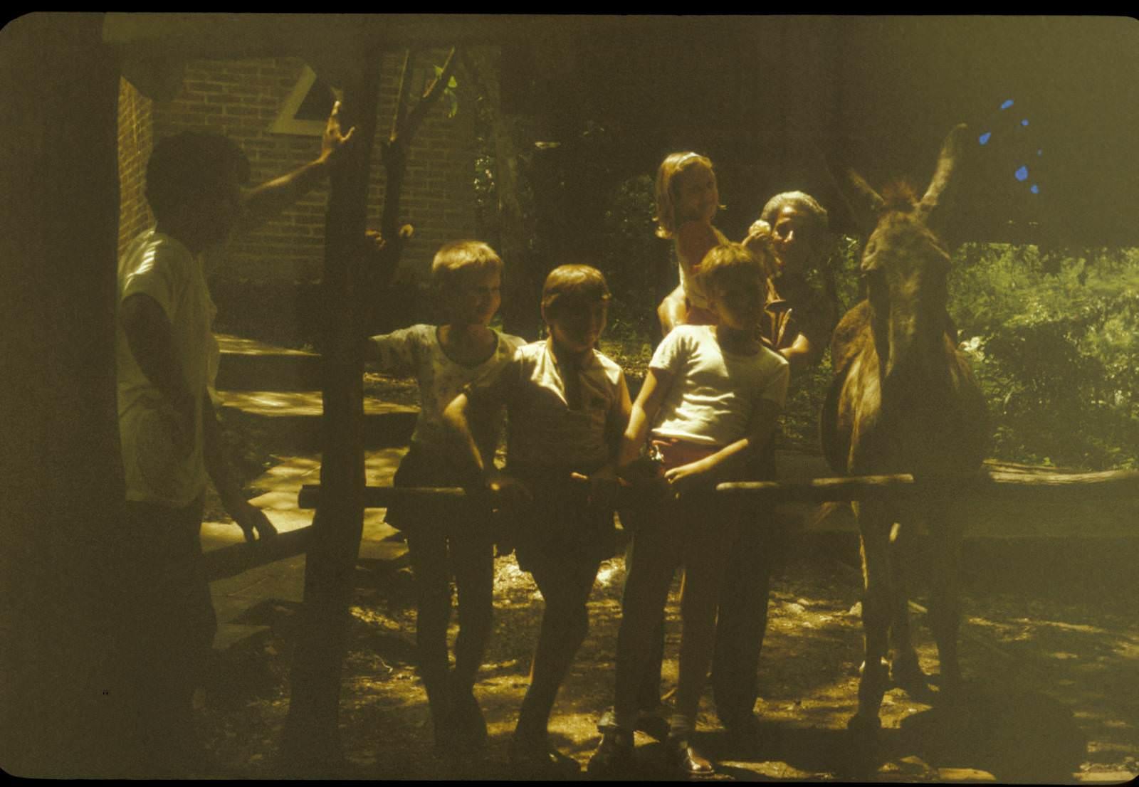 115. 1988. Mirador de Mayabe, окрестности Ольгина, фото 7