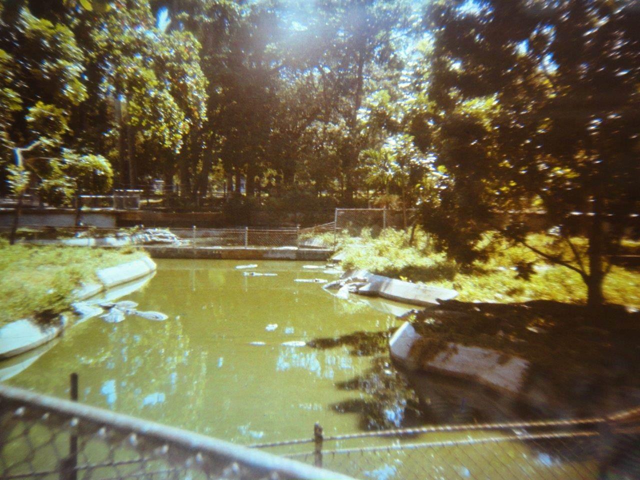 159. В Гаванском зоопарке