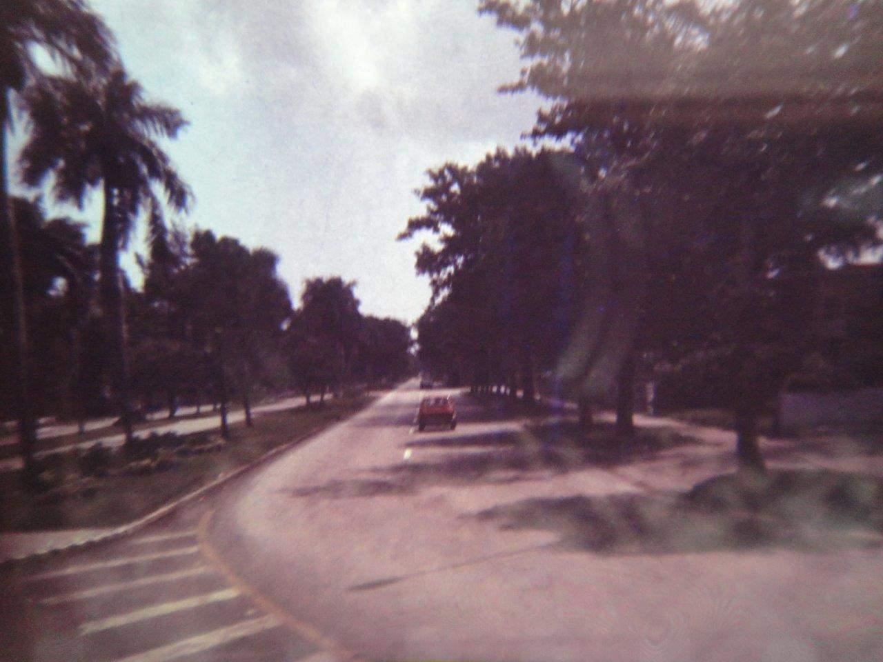 227. В Гаване