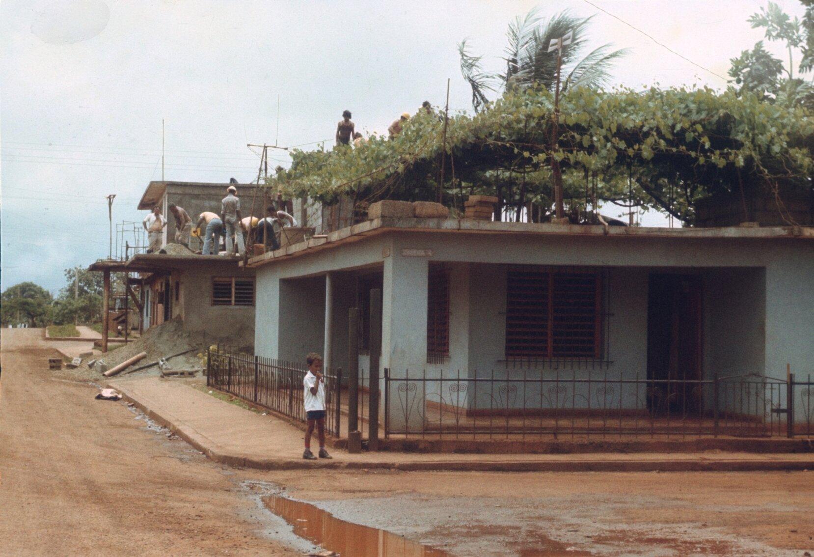 1985-1988. Виноградник на крыше дома.