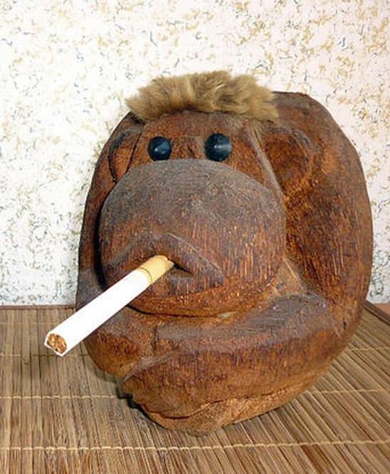 Обезьянка-курильщик