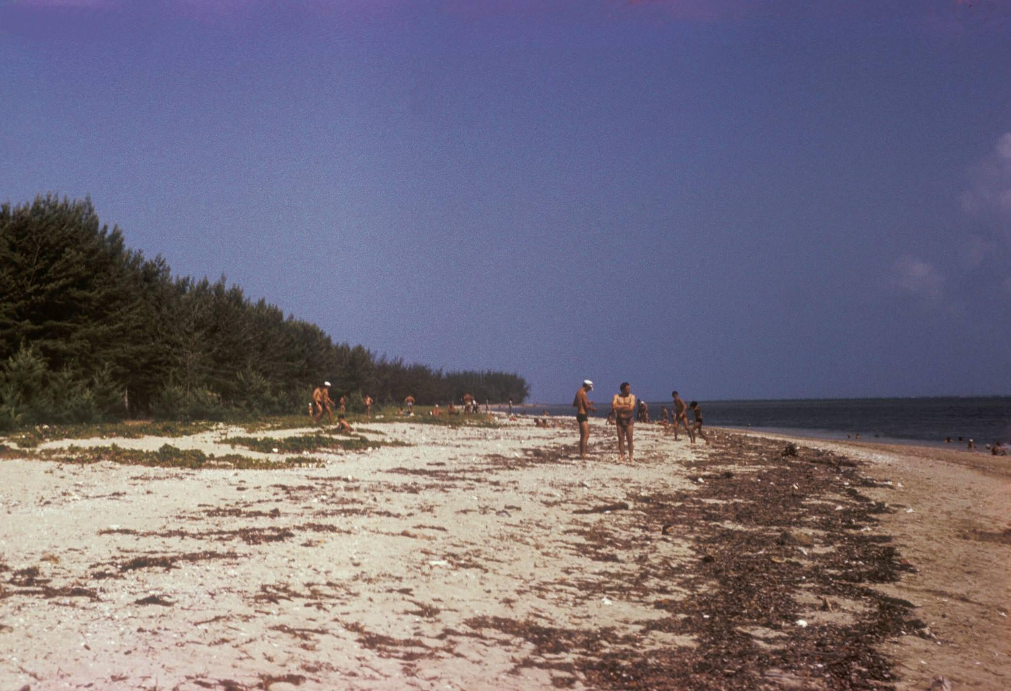 «Барка». Пляж