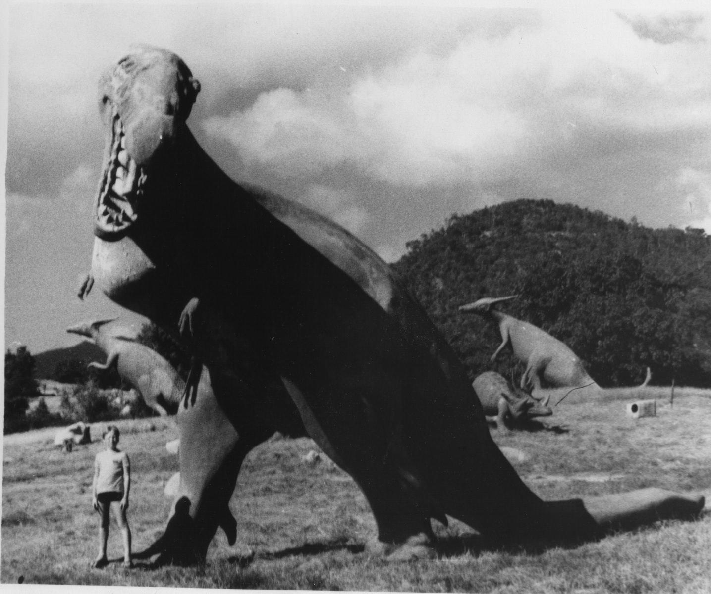 Сантьяго-де-Куба. 1987. Долина динозавров. Андреев Саша.