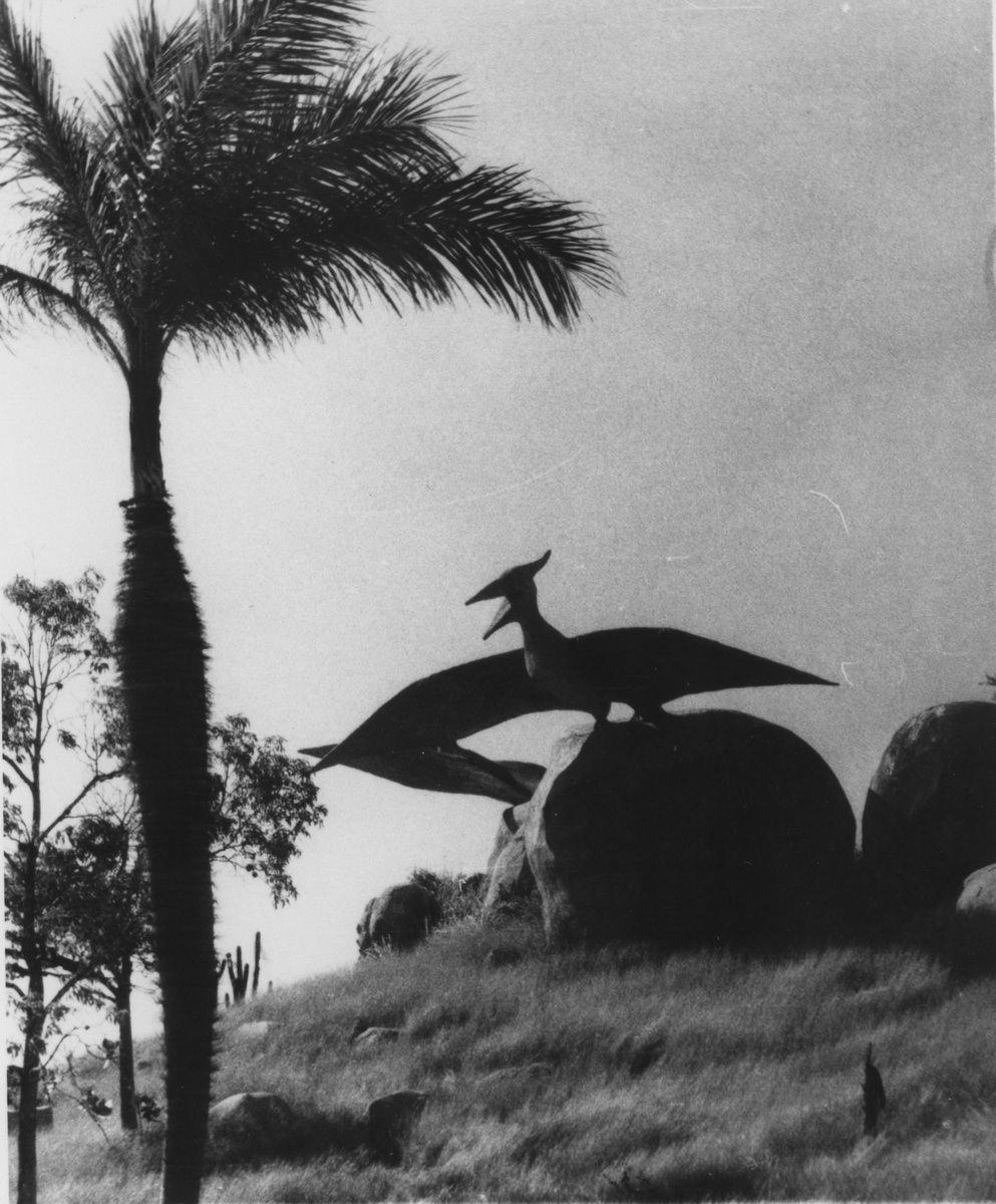 Сантьяго-де-Куба. 1987. Долина динозавров.