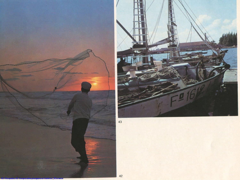042. Pescador. 043. Cooperativa pesquera en Cardenas.