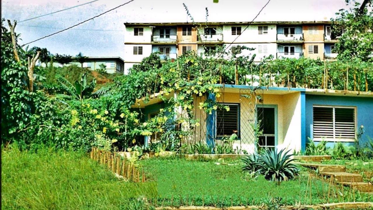 1977-1981. Фото 03. Есть и такие дома у кубинцев.
