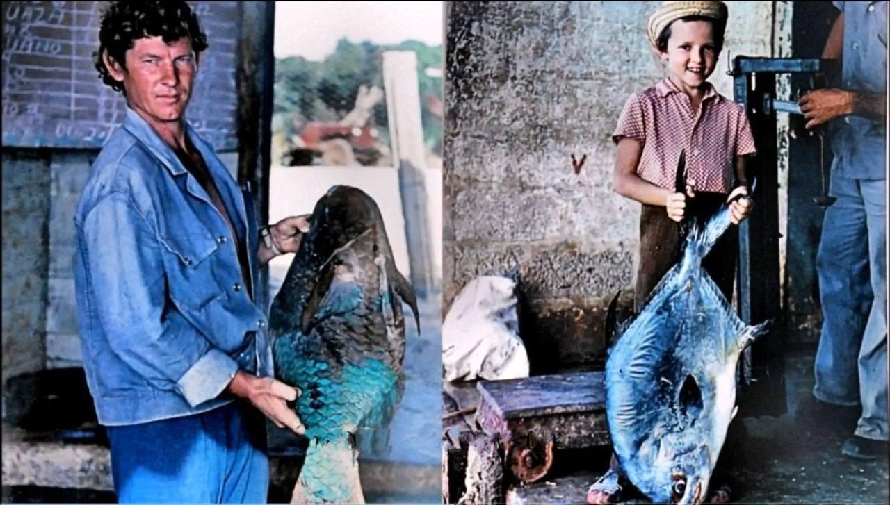 1977-1981. Улов рыбака
