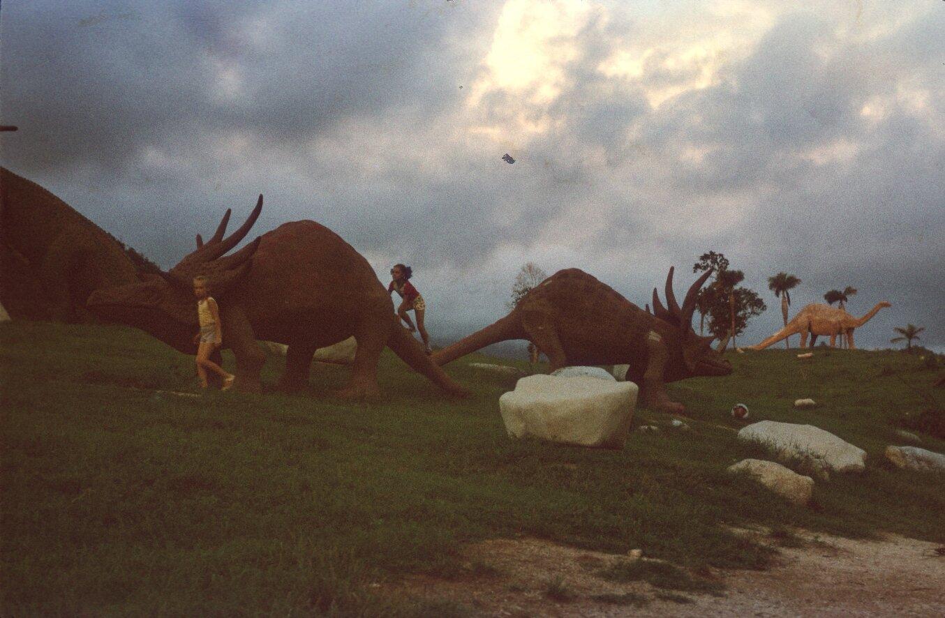 Сантьяго-де-Куба. Долина динозавров. 1985-1988. Фото 3