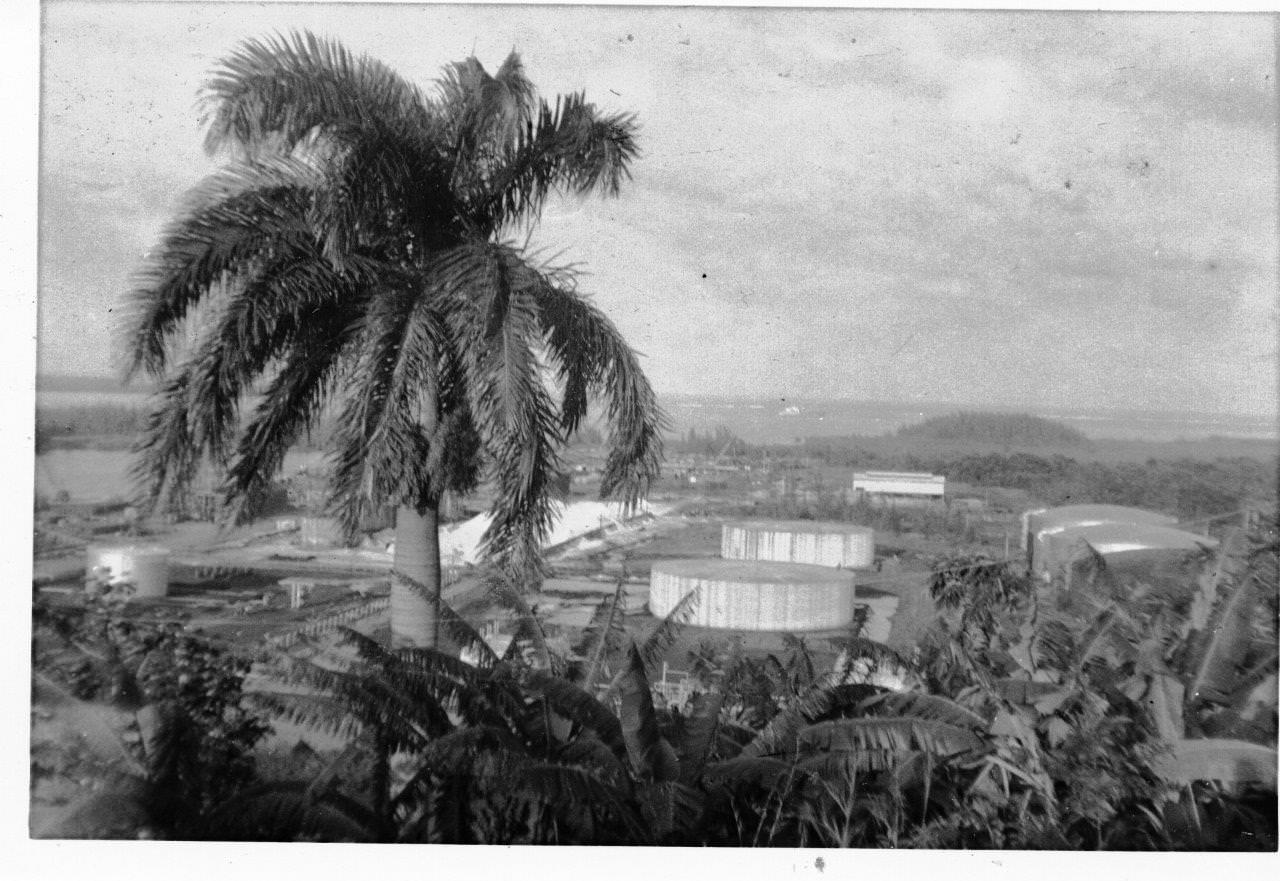 1980-1983. Пунта Горда.