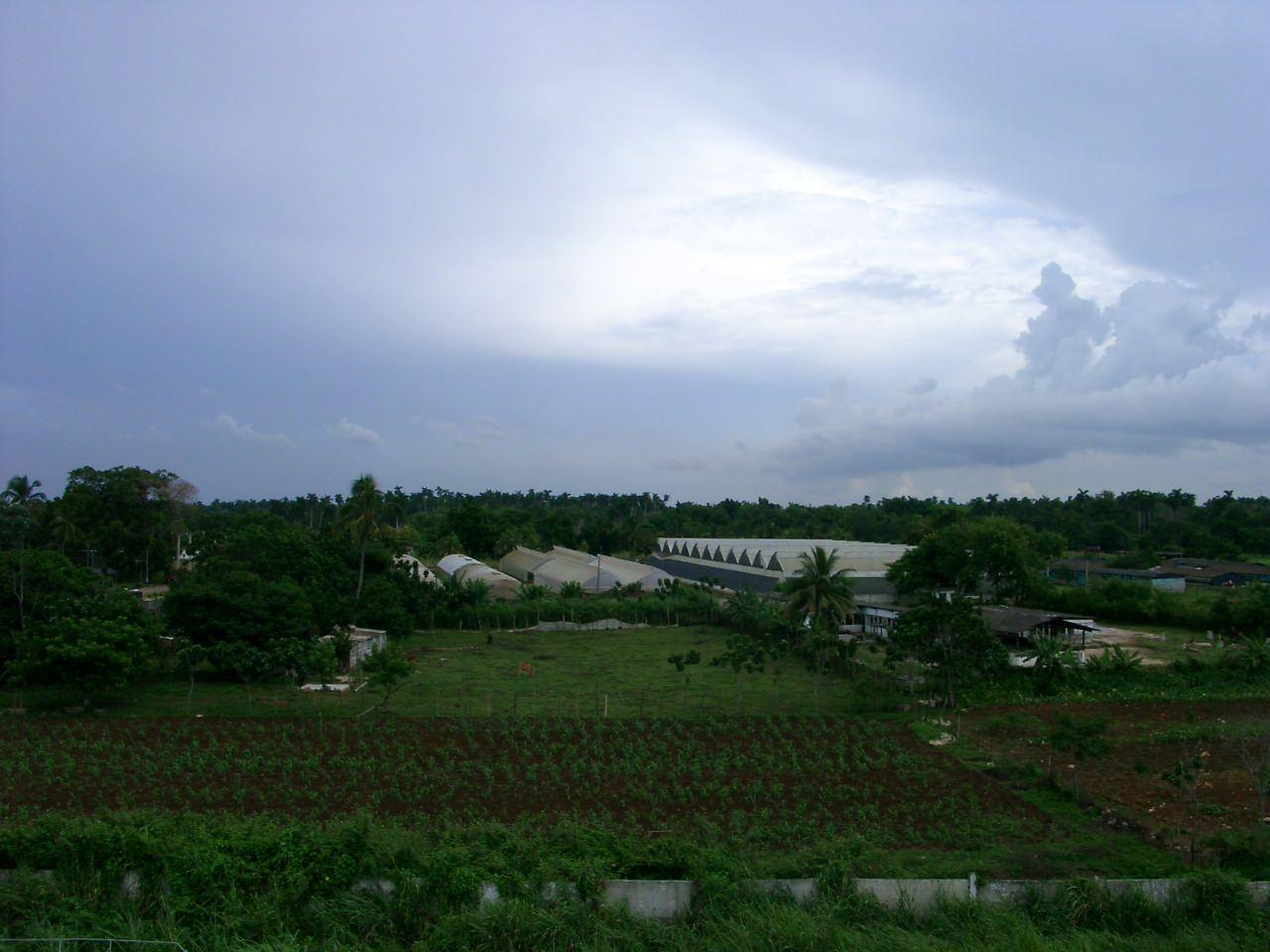 Кубинские парники и территория за забором части, фото 2