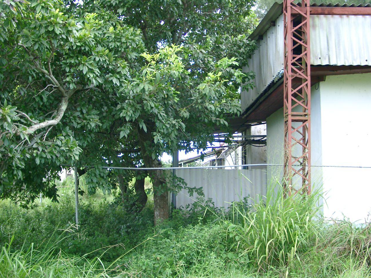 Бывшая курилка, рядом слева – угол нижнего зала. Крыша с каркасом была надстроена позднее.
