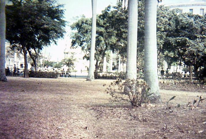 1970-1979, фото 15