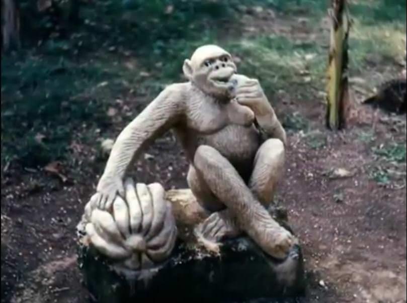 «Каменный зоопарк» в Ятерасе - Zoologico de Piedra. 1982-1984, фото 1