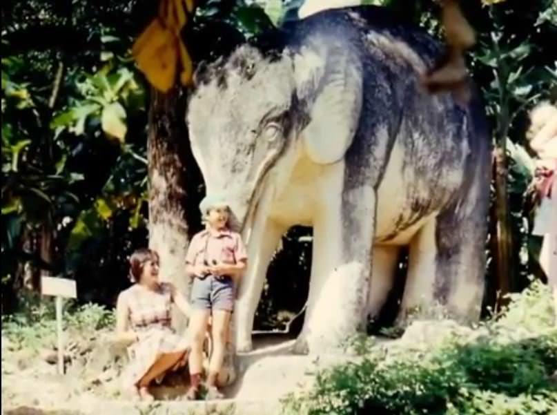 «Каменный зоопарк» в Ятерасе - Zoologico de Piedra. 1982-1984, фото 6
