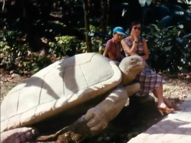«Каменный зоопарк» в Ятерасе - Zoologico de Piedra. 1982-1984, фото 7