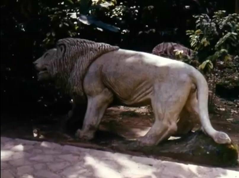 «Каменный зоопарк» в Ятерасе - Zoologico de Piedra. 1982-1984, фото 11