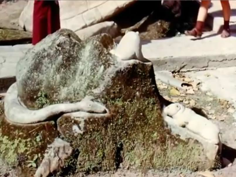 «Каменный зоопарк» в Ятерасе - Zoologico de Piedra. 1982-1984, фото 12