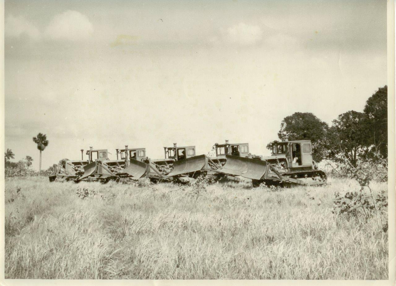 28. Тракторы для расчистки деревьев в Республике Кубе. 1961 г.