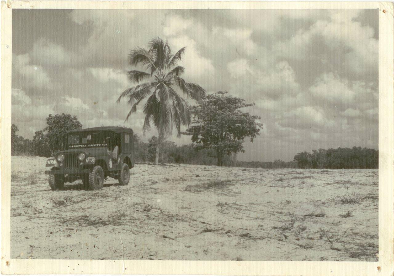 31. Вид на лесной массив в Республике Куба. 1961 г.
