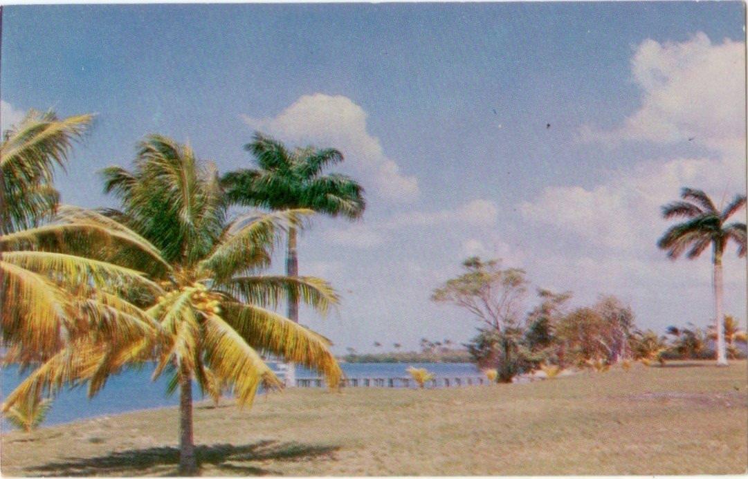 53. Карточка почтовая. Гавань Кабаньяс в Пинар-дель-Рио, Республика Куба. Республика Куба, г. Гавана. 1960-е гг.