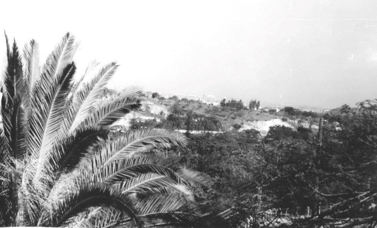 017. 1967-1969. Панорама 4 (вид на парк)