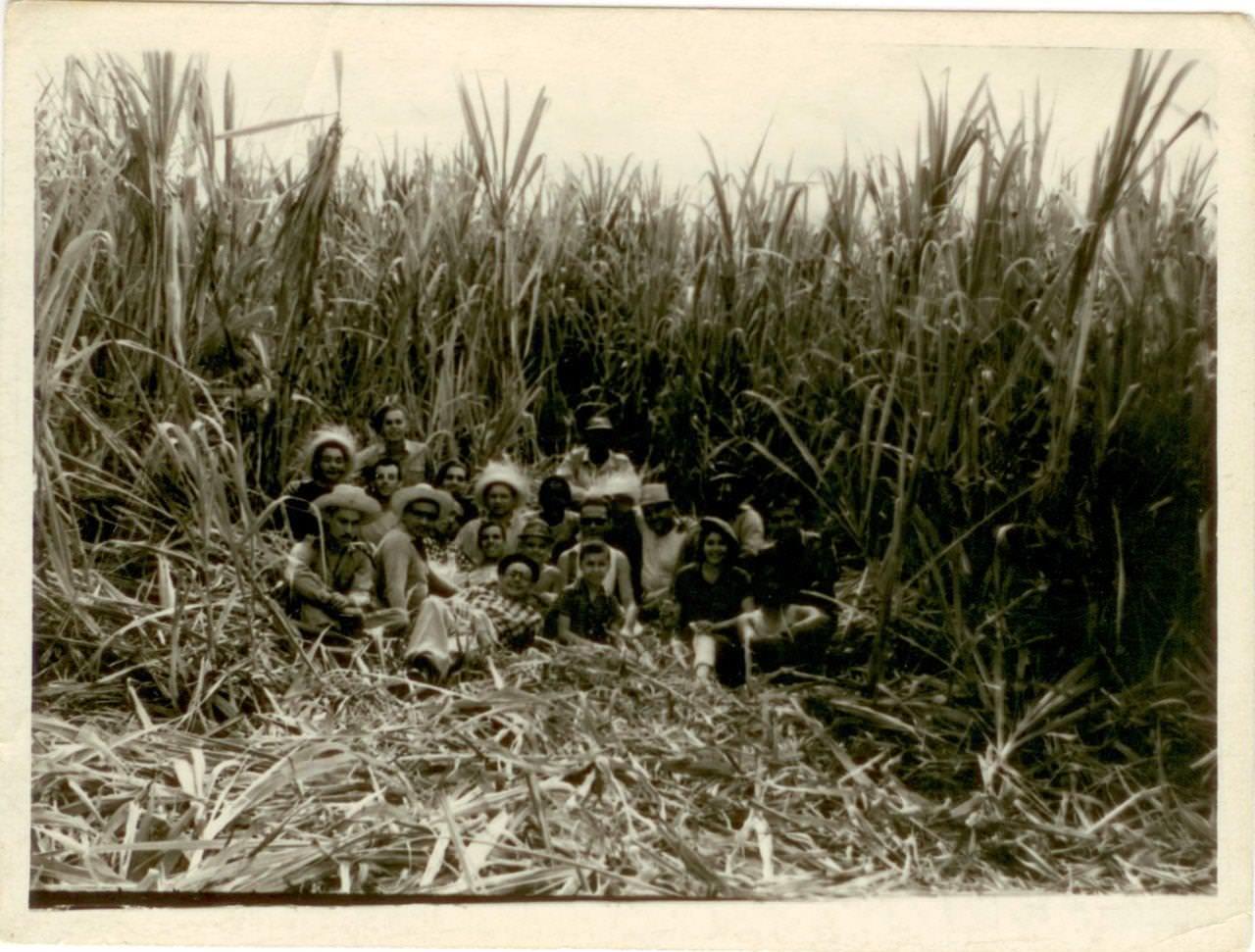 06. Советские специалисты и кубинцы на плантации сахарного тростника. Республика Куба, г. Гавана. 1961 г.