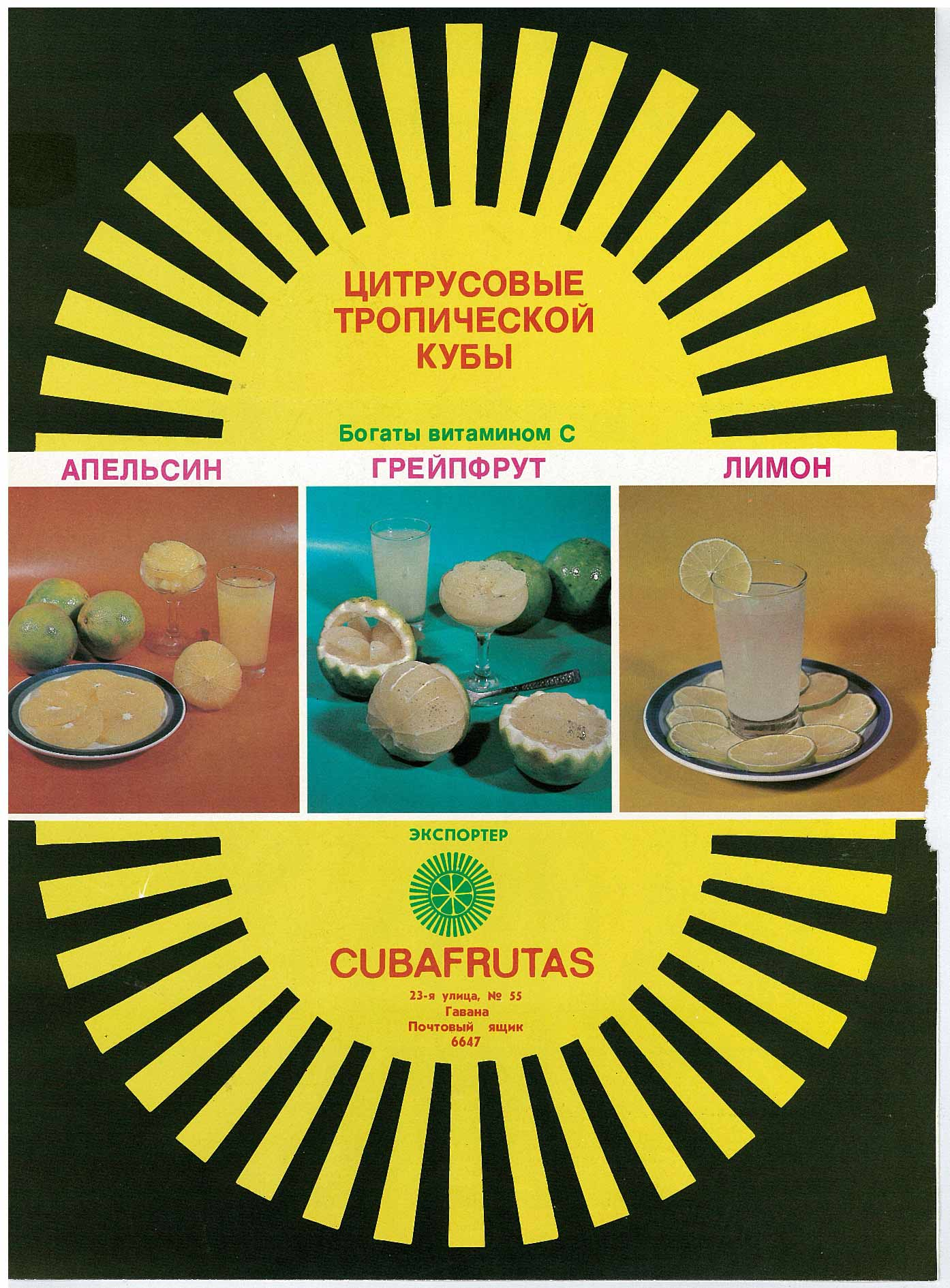Цитрусовые тропической Кубы