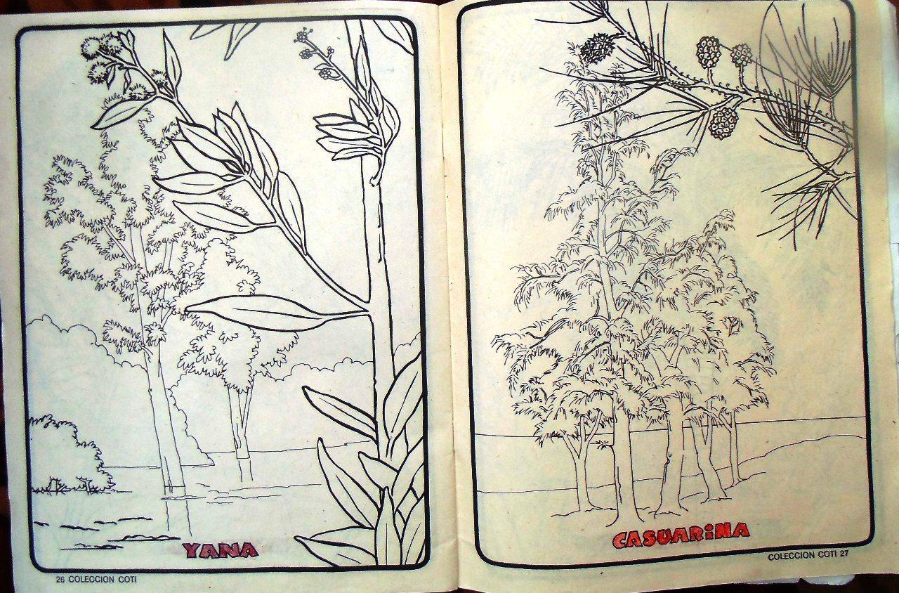 Стр. 26-27. «yana» (яна) и «casuarina» (казуарина)