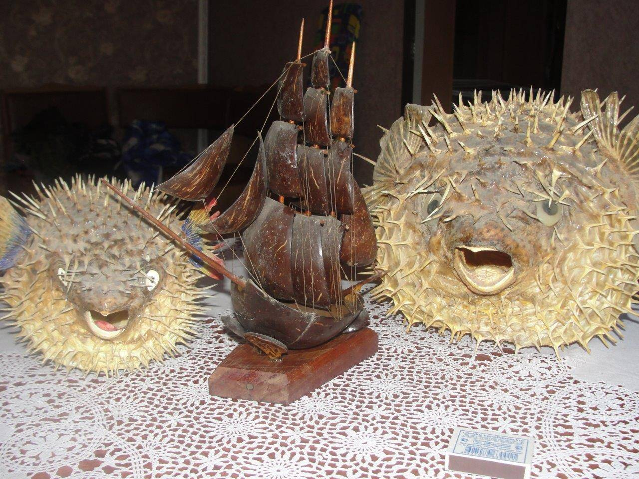 Парусник и две рыбы-шар