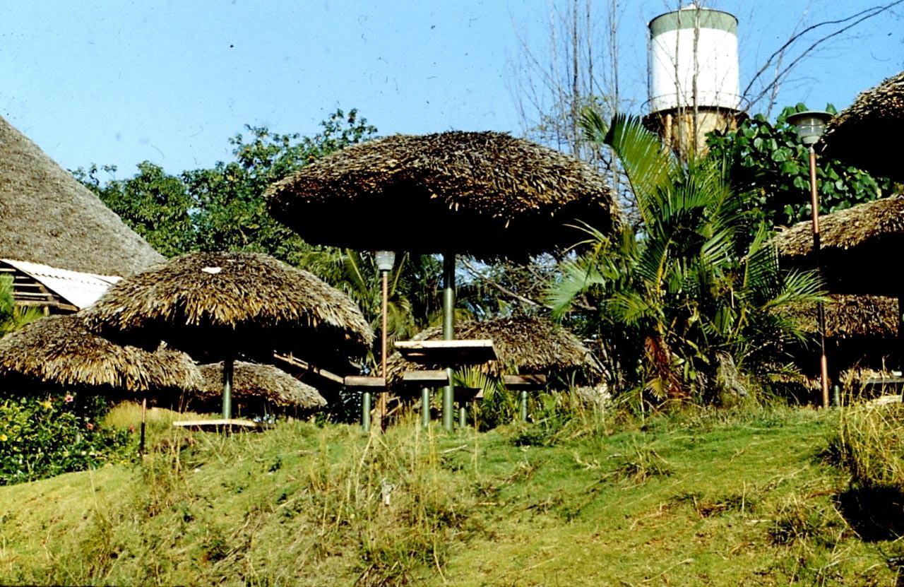 1983-1985. Серия 1. Фото 28. Поляна для сборов около Интерклуба.