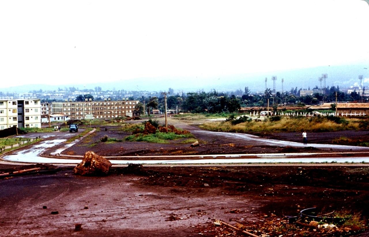1983-1985. Серия 1. Фото 33. Роло в дождь.