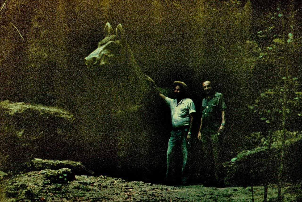 «Каменный зоопарк» в Ятерасе - Zoologico de Piedra. 1980-1984, фото 1