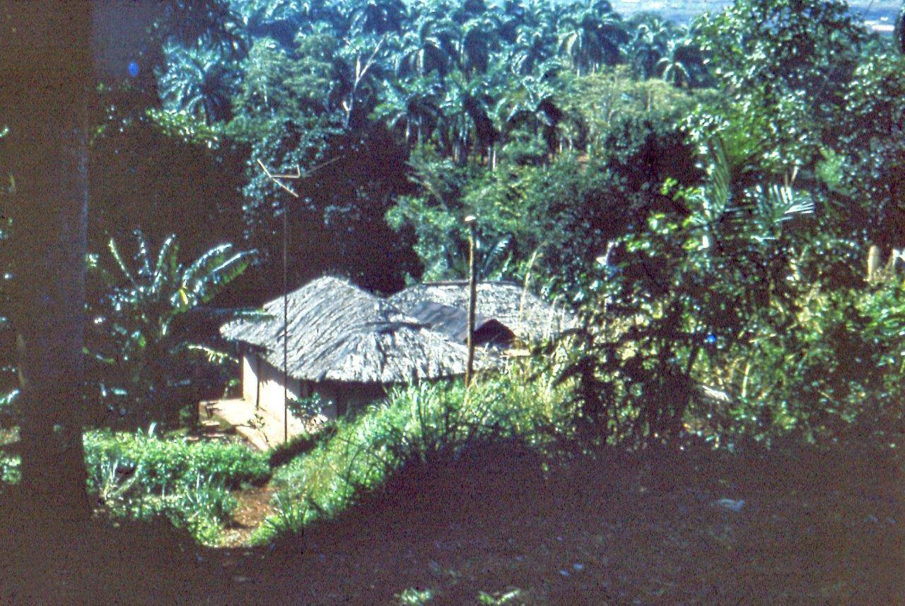 «Каменный зоопарк» в Ятерасе - Zoologico de Piedra. 1980-1984, фото 4