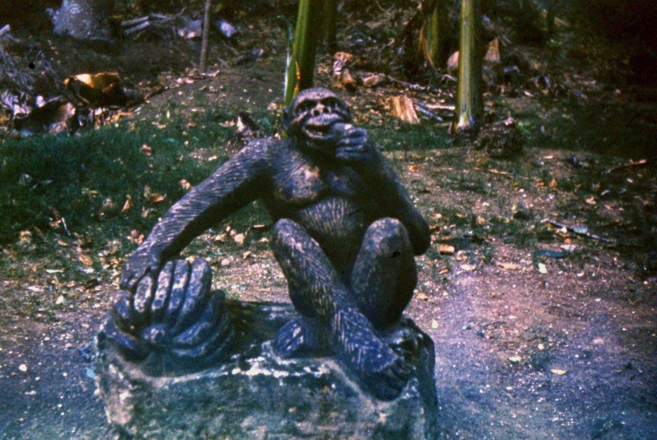 «Каменный зоопарк» в Ятерасе - Zoologico de Piedra. 1980-1984, фото 9