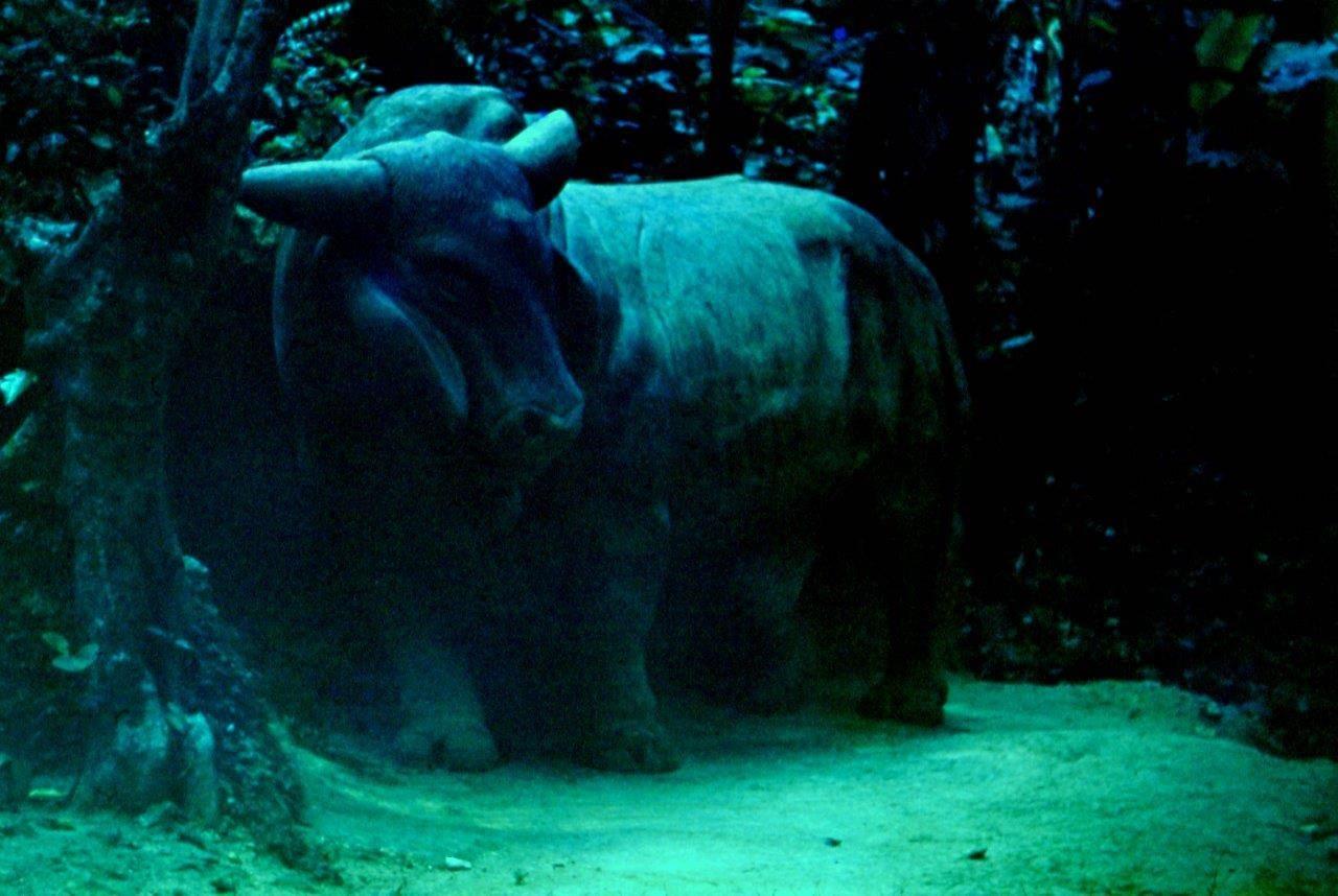 «Каменный зоопарк» в Ятерасе - Zoologico de Piedra. 1980-1984, фото 11