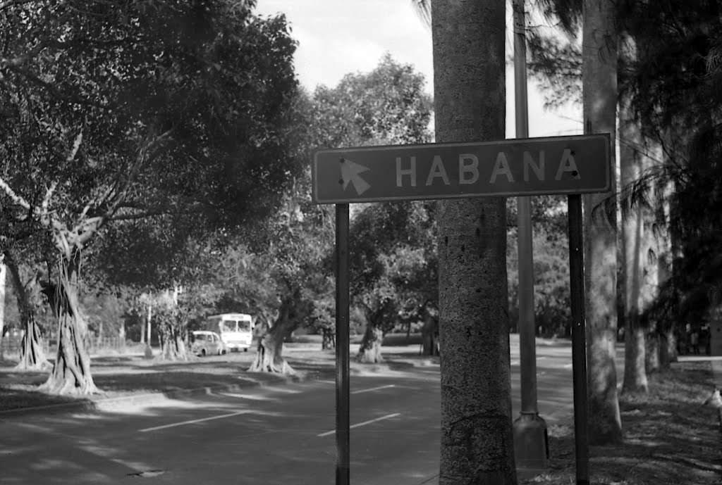 011. 5 авенида в районе Флореса, 1976