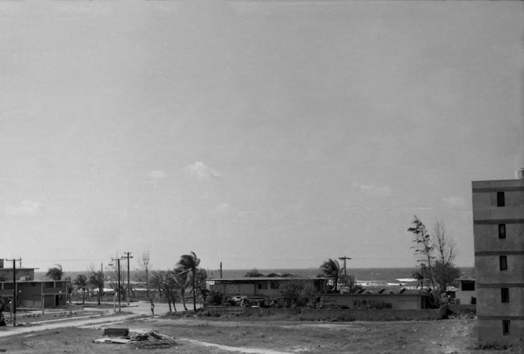 012. Вид с балкона Флореса, 1975