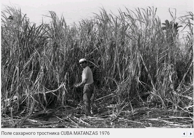 127. Поле сахарного тростника, Матансас, 1976