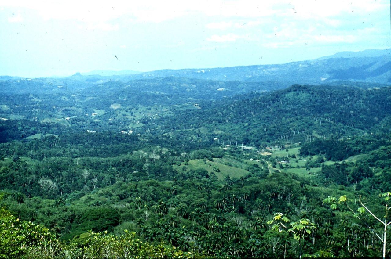 Горы Сьерра-Маэстра. 1983-1985. Вид с перевала. 1