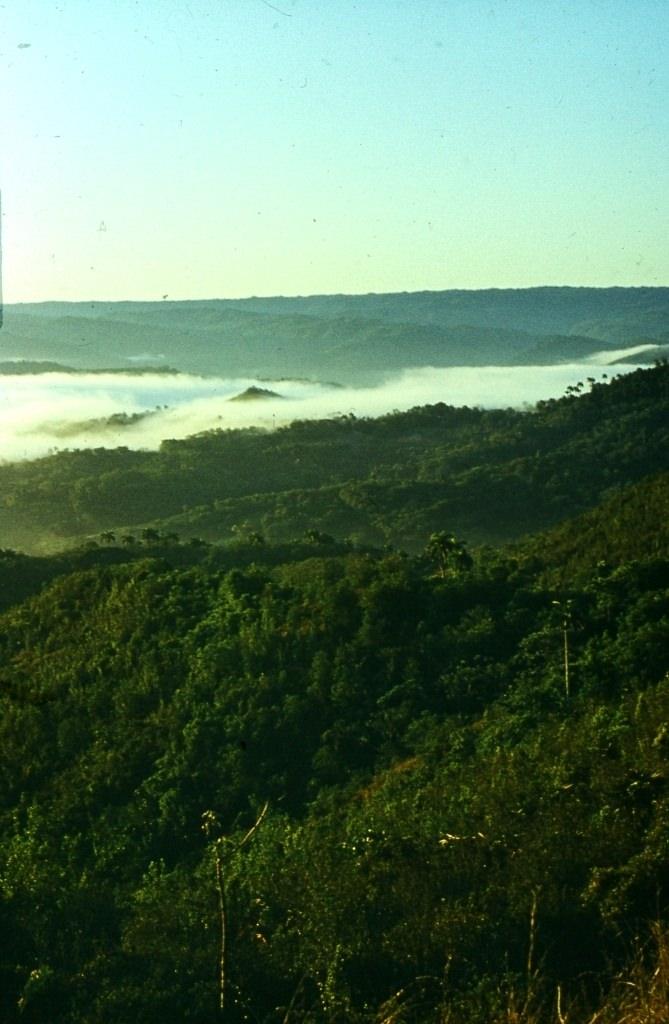 Горы Сьерра-Маэстра. 1983-1985. Над облаками-2.