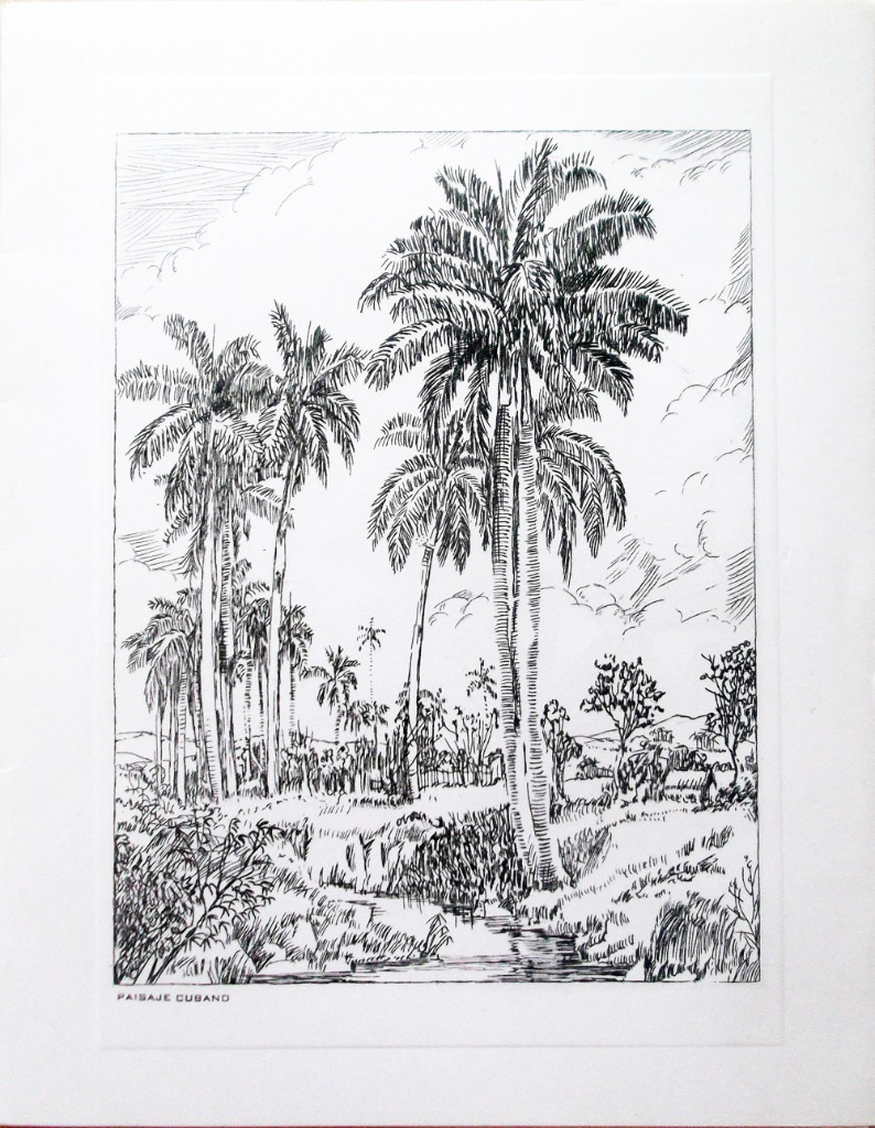Кубинский пейзаж; открытка 80-х годов.