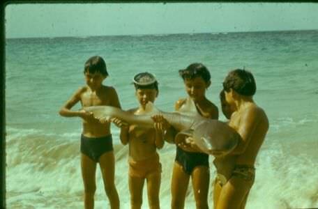 1980. «Барка», мальчики и море.