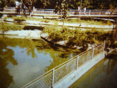157. В Гаванском зоопарке