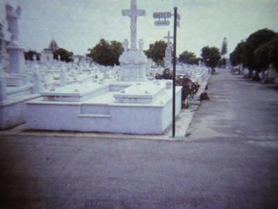 226. В Гаване