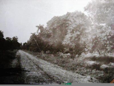 024. Дорога рядом с Торренсом, фото 1